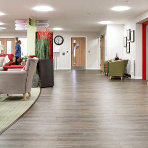 Hospitals Laboratories Clinics Vinyl Flooring-5