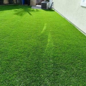 Synthetic Grass-3